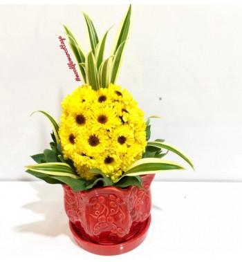 Prosperity Pineapple Arrangement - Small